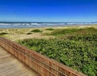 SP tem 14 praias impróprias para banho, um risco à saúde dos turistas.